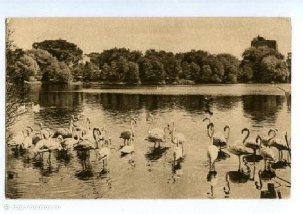 1926 год. Изображение № 11.