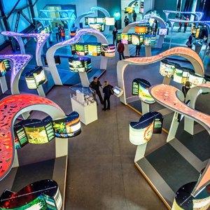 События недели: Научный туннель Макса Планка, немецкое искусство иSt.Petersburg DesignWeek. Изображение № 8.