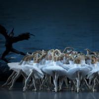 Планы на весну: Выставки, балет, опера. Изображение № 17.