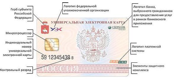 Раскрыт облик российских электронных паспортов будущего. Изображение № 2.