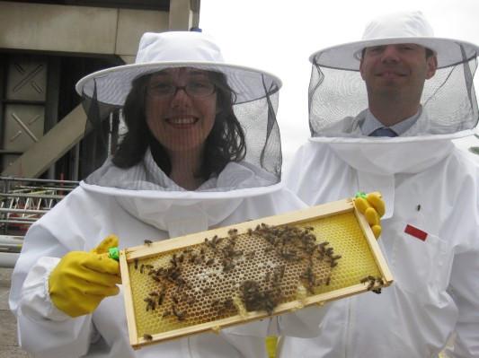 Как у них: «Городские пчёлы» в Лондоне. Изображение № 23.
