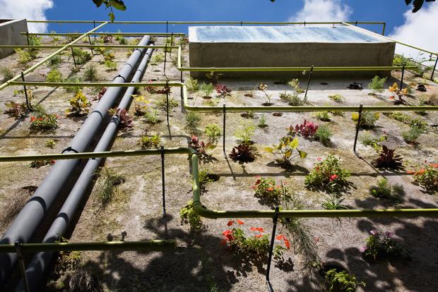 Дизайн от природы: Тропическая архитектура Бразилии. Изображение № 14.