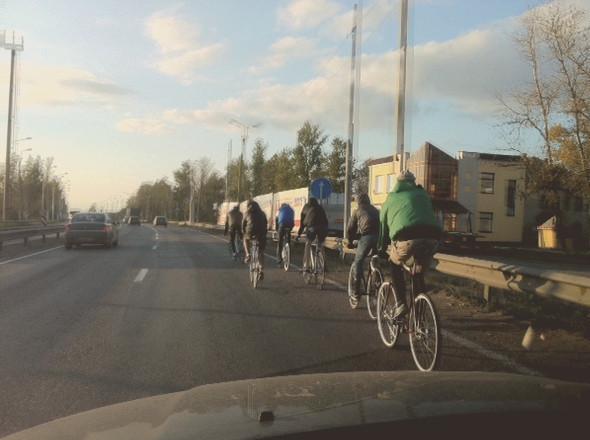 Петербург и Москву может соединить велотрасса. Изображение № 6.