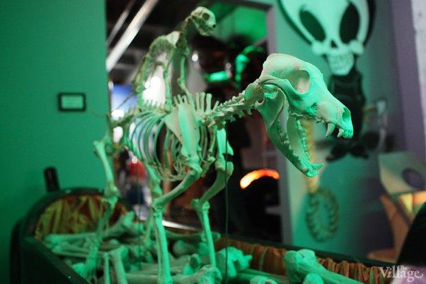 Открытие музея смерти в Москве. Изображение № 20.
