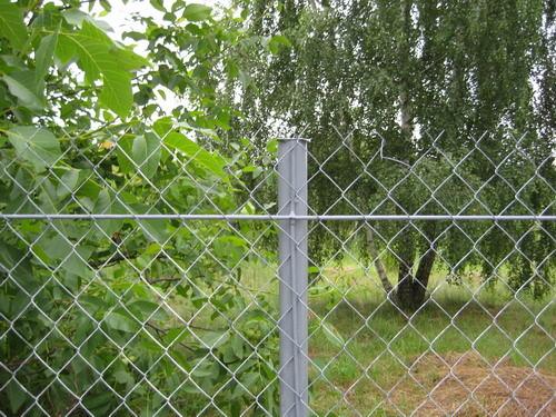Забор из рабицы. Изображение № 4.