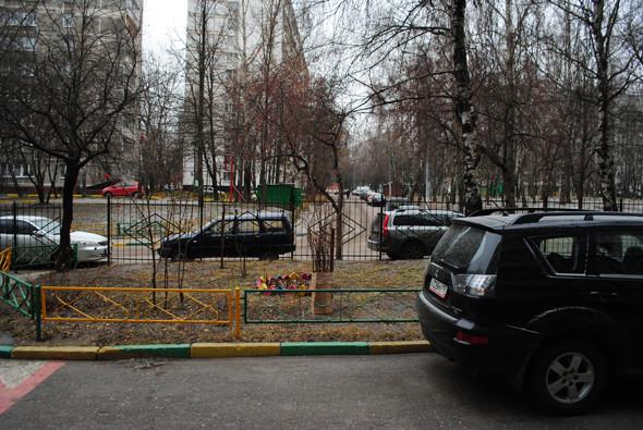 Бирюлево — центр: Что знают о митинге в спальных районах. Изображение № 4.