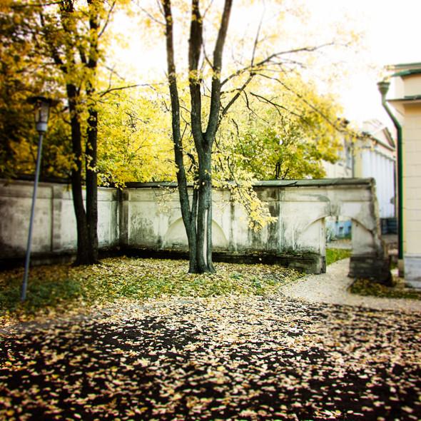 В зоне риска: Египетский павильон и Померанцева оранжерея в Кузьминках. Изображение № 11.