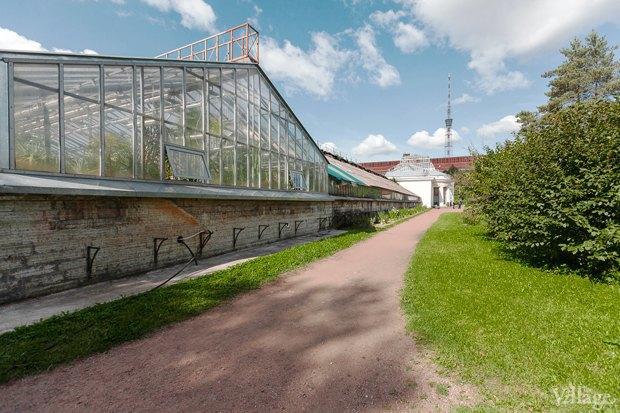 Фото дня: Что изменилось в Ботаническом саду. Изображение № 10.