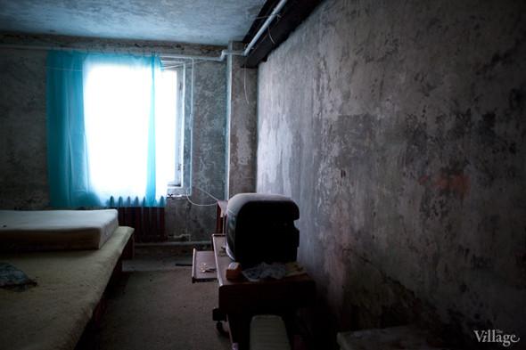 Фермы Москвы: Молочное хозяйство Валентины Жуковой. Изображение № 33.