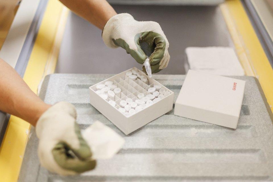 Микробиолог Андрей Шестаков— ополезных микробах, вреде молока ифинансировании науки. Изображение № 10.