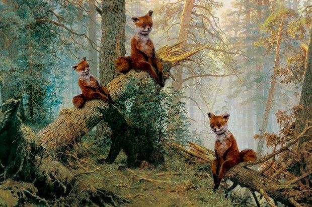 Упоротого лиса выставят в Петербурге. Изображение № 1.