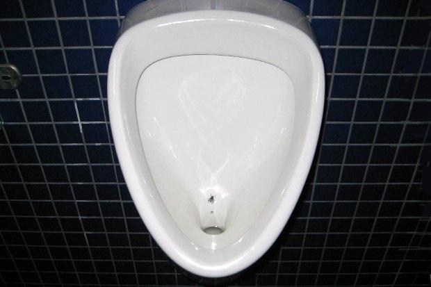 Взять на муху: Александра Шевелева о чистоте вобщественном туалете и силе простых решений. Изображение № 2.