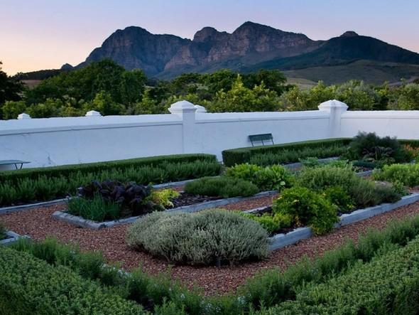 Иностранный опыт: Органическая еда в ЮАР. Изображение № 19.