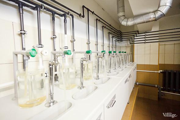 Несколько раз в день воду проверяют в лаборатории. Изображение № 46.
