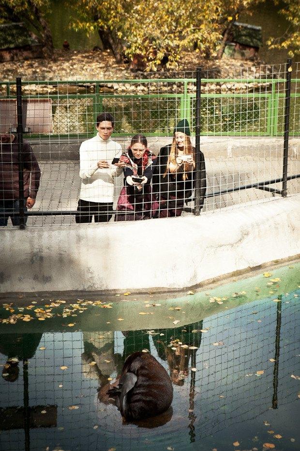 Cъёмка: Осень в зоопарке. Изображение № 12.
