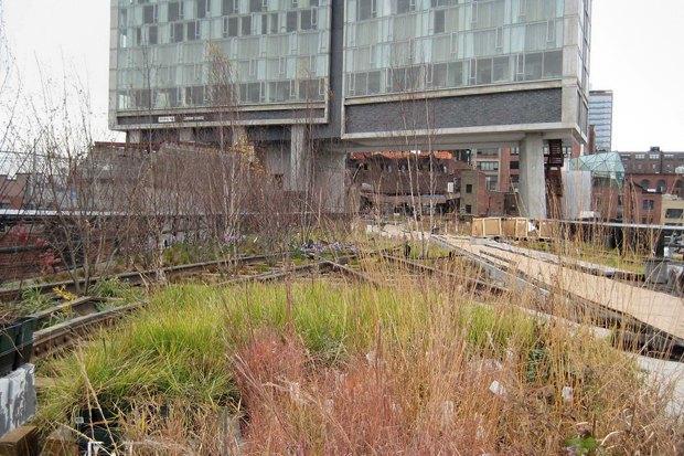 Как создать необычный парк: 5советов архитектора «Хай-Лайна». Изображение № 21.