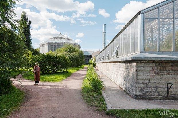 Фото дня: Что изменилось в Ботаническом саду. Изображение № 11.