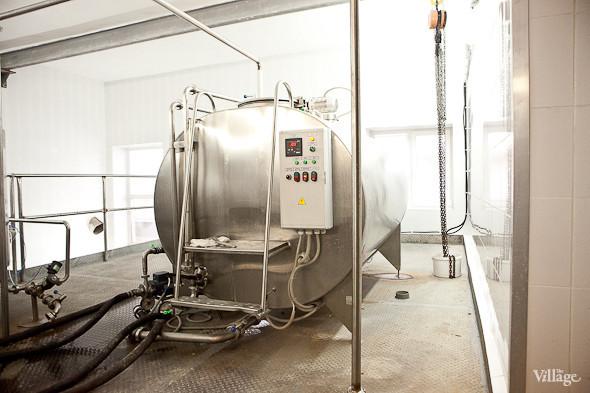 Репортаж: Как делают молочные продукты в «Лосево». Изображение № 43.