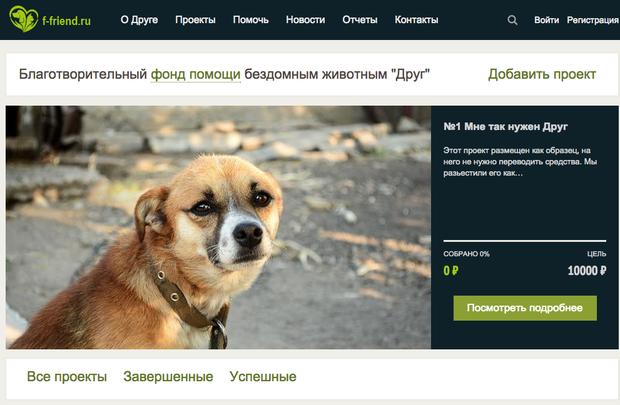 Создан краудфандинговый сервис для помощи бездомным животным. Изображение № 1.
