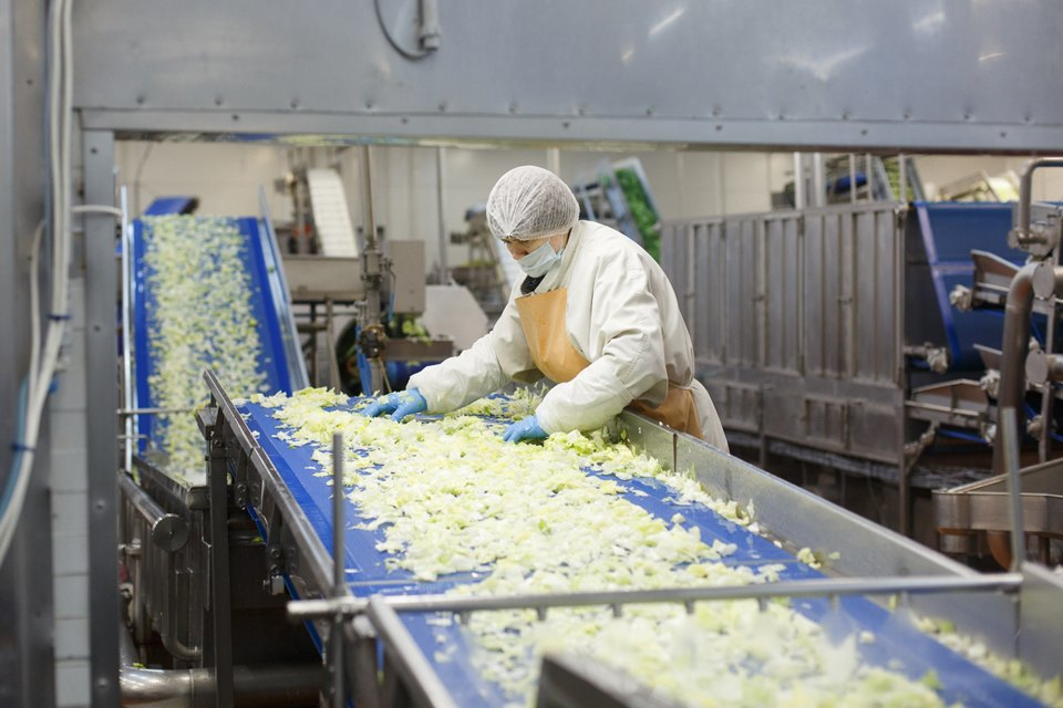 Производственный процесс: Как делают салаты для McDonald's. Изображение № 18.