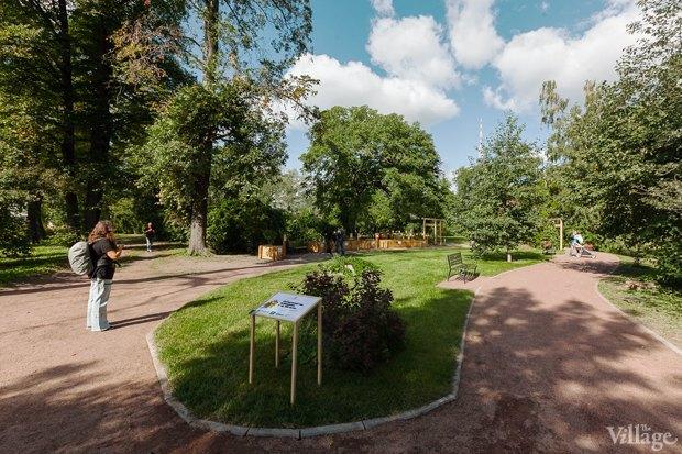 Фото дня: Что изменилось в Ботаническом саду. Изображение № 1.
