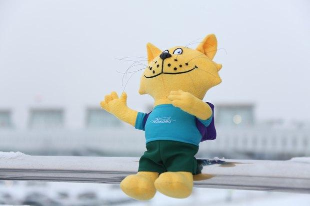 У аэропорта Пулково появился игрушечный кот-талисман. Изображение № 1.
